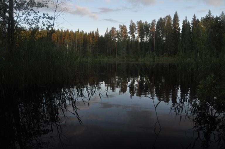 Illan rauhaa...kunnes majava alkaa meuhkata ja mäiskiä hännällään vettä...