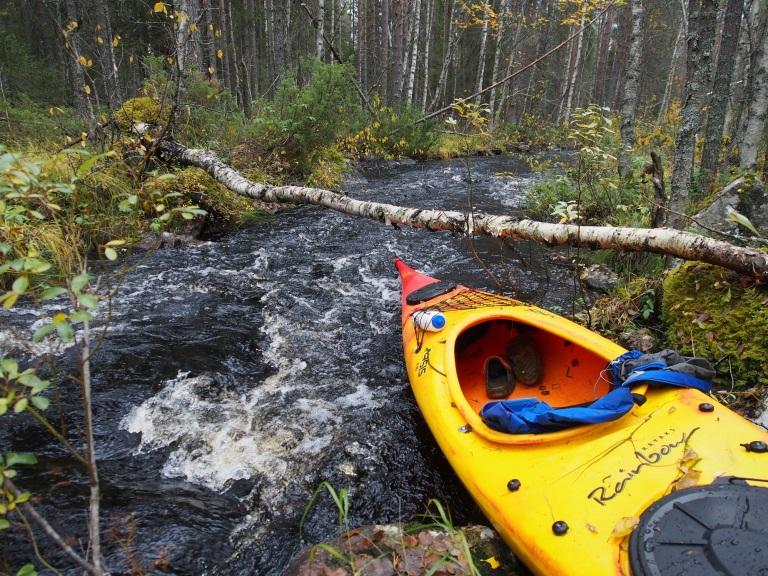Suurin matkan hidastaja Kellojoella on kaatuneet tai kaadetut puut. Joki on sen verran kapea, että runkoja oli paljon. Moniin paikkkoihin niitä oli selkeästi laitettu silloiksi.