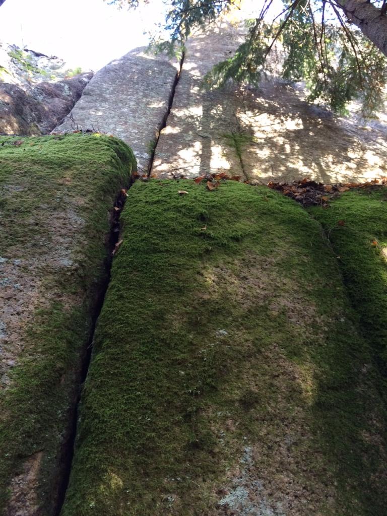 Hyyppivuorelle pitäisi mennä ajan ja harjan kanssa, tai sitten hankkia rautainen luotto sammaleen kitkaominaisuuksiin.
